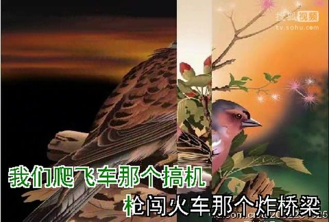 弹起我心爱的土琵琶(《铁道游击队》电影插曲)(2)