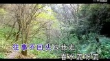关于刘紫玲现场演唱会视频的专题_搜狐视频