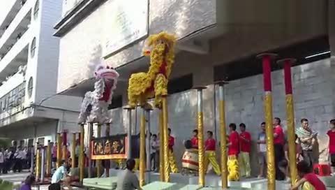 佛山舞狮子表演视频_广东佛山舞狮 佛山舞狮子表演醒狮队 高清-原创视频-搜狐视频
